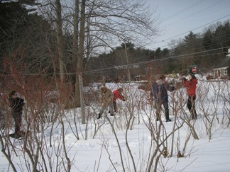 the-pruning-crew-02-07-09
